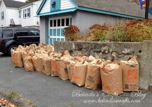 All of our leaves bagged for the season.