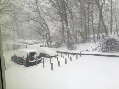 blizzard2015_1