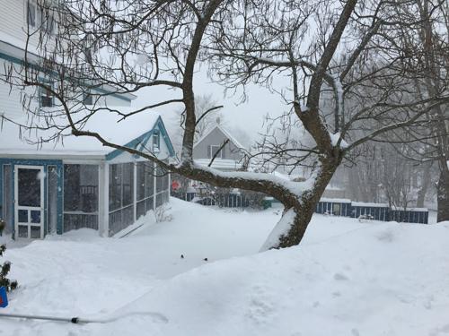 blizzard2015_5